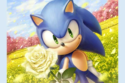 Pin On Sonic Friends And Rivals