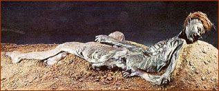 a peat bog mummy
