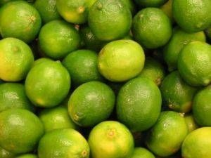 How to grow a lime tree in a pot