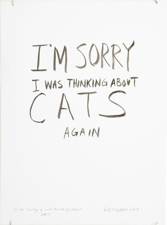 @Liz Pasqualini - I'm sorry. I was thinking about cats again.