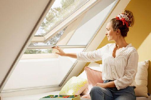 Homeplaza - Insektenschutz-Rollos für Dachfenster garantieren ruhige Sommernächte - Das Ende der Mückenjagd