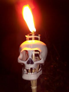 1 dollar for clearance torch.1 dollar for Dollar Tree Skull = nice Halloween Torch!