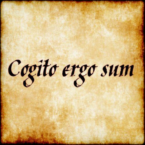 I Think Therefore I Am Latin Translation 21