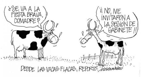 Un reporte desde las flacas vacas.