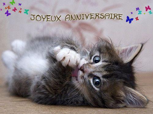 Joyeux Anniversaire Dany Sujet 1 Les Meilleures Idees Pour Carte Anniversaire Chat Carte Anniversaire Chat Anniversaire Chat Joyeux Anniversaire Chats