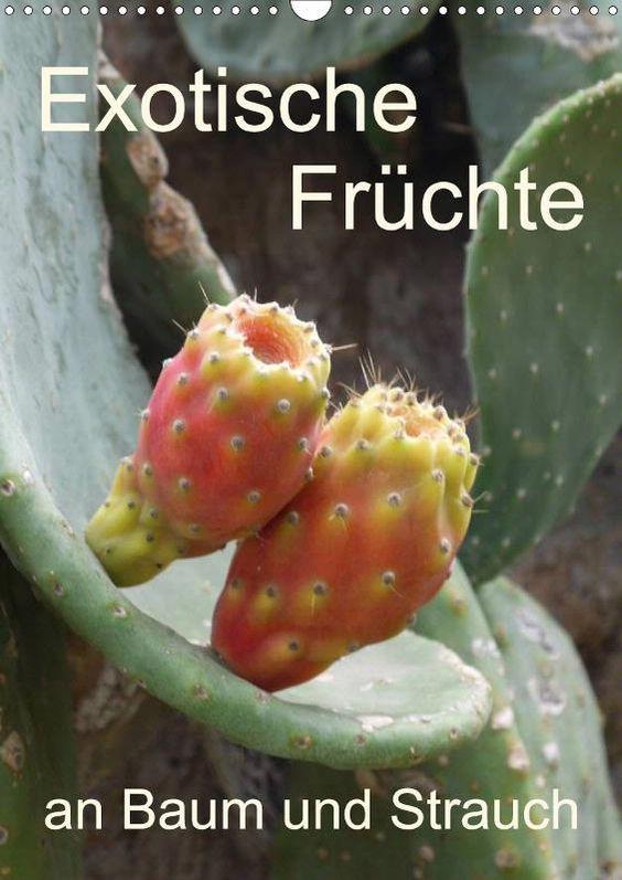 Exotische Früchte an Baum und Strauch - CALVENDO Kalender
