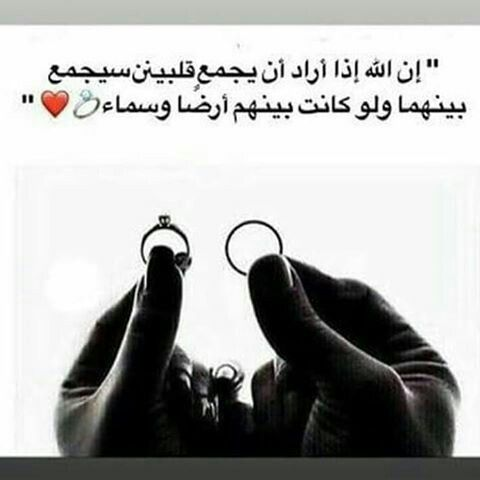 Pin By F14111411 A On ليتها تقرأ Love Husband Quotes Funny Arabic Quotes Social Quotes