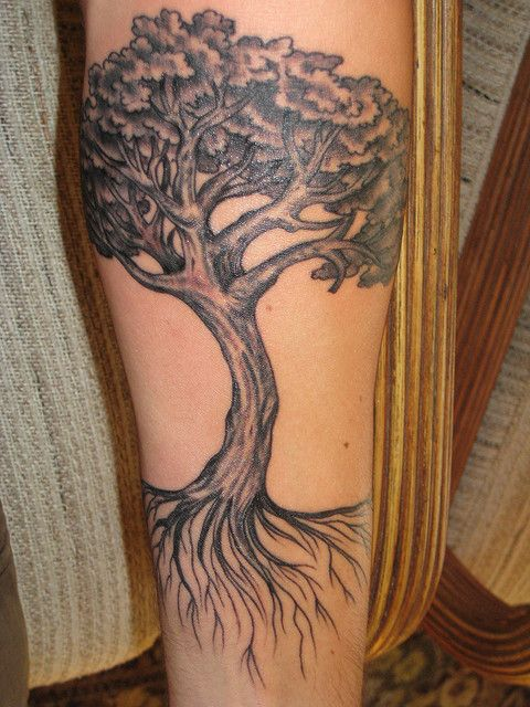 Oak Tree With Roots Tattoo: Oak Tree Tattoo By Bringatowel, Via Flickr