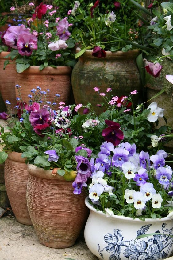Ein Stück Bauerngarten auf der Terrasse? Mit farbenfroher Blumenpracht in alten Töpfen und Krügen schön umgesetzt.