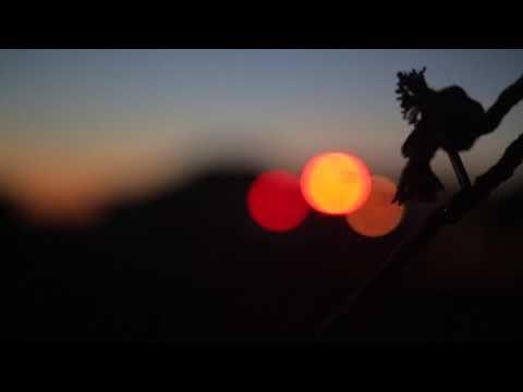 مشاهد للمونتاج قالو الوداع مبارك المصارير Hd حصري Youtube Celestial Sunset Body