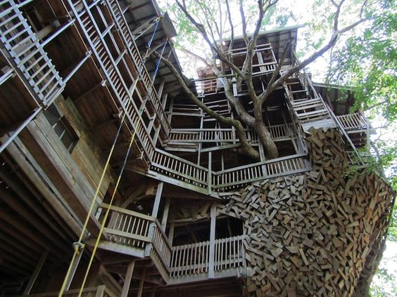 Massive 80-Room Tree House Stands Almost 100-Feet-Tall - My Modern Metropolis | #treehouse #thisonegoestoeleven