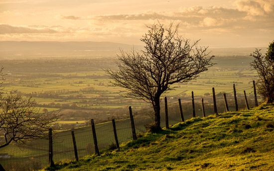 A Fence with a view - Somerset, UK. ID DSC_5212
