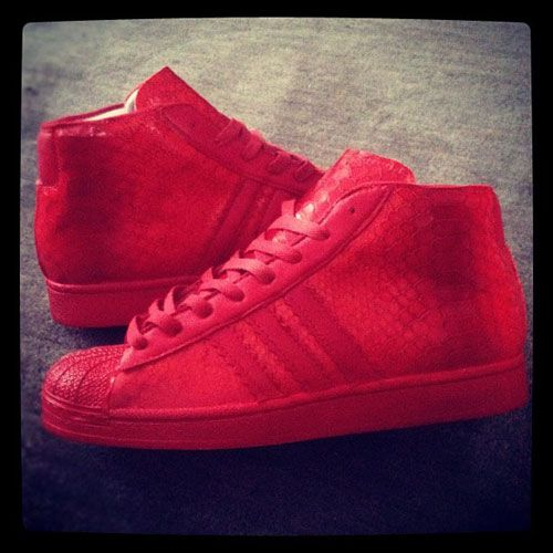 8053d31a90a2 red shell toe adidas