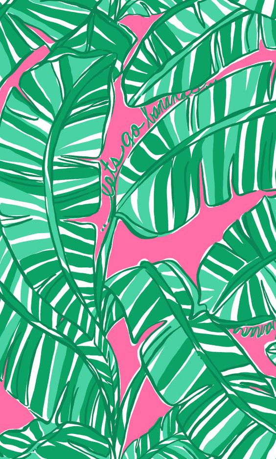 This Lilly print background works so well with the Lilly ...