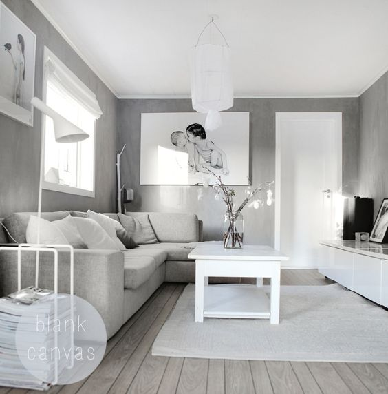 Gray And White Living Room: White And Light Grey. Natural Charme. Blank Canvas