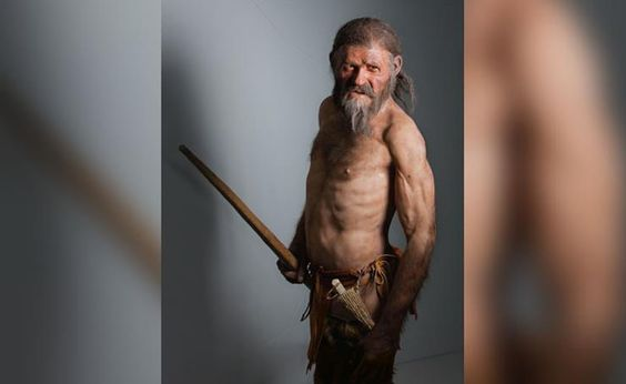This artist's rendering seems to reflect what would have been the rangy, rugged Neolithic human being that was Ötzi, the Iceman.