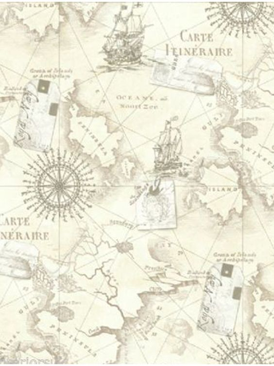 neutral navigator map wallpaper arthouse 622003