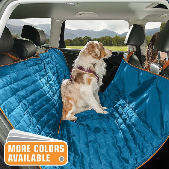 A great and safer way to travel with dogs in the car
