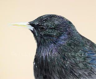 'Starling' Hand & Machine Embroidered Textile Art Canvas. ©gillianbates2016