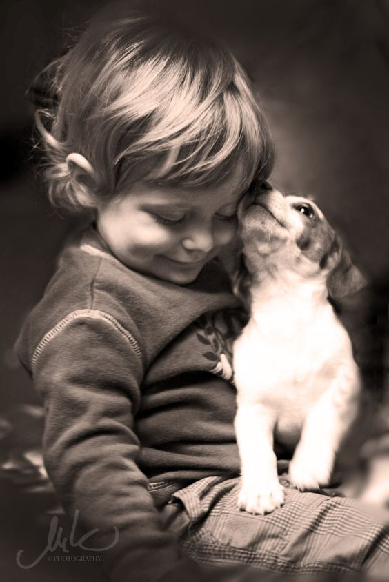 ...a boy and his dog...a pure love.