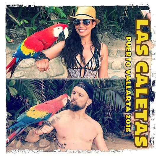 Pauly wanna cracker? #LasCaletas #honeymoon #privateisland #parrot #sunnywedschris by chrisgerry84 http://www.australiaunwrapped.com/