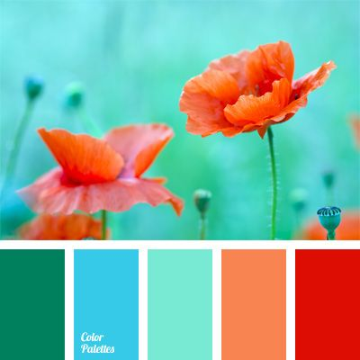 Turquoise and coral color palette - absolutely gorgeous!