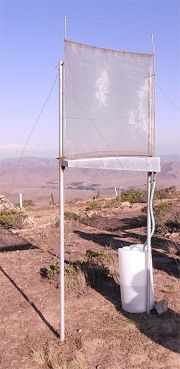 How to get fresh water out of thin air |  Fog-harvesting system developed by MIT and Chilean researchers could provide potable water for the world's driest regions.: