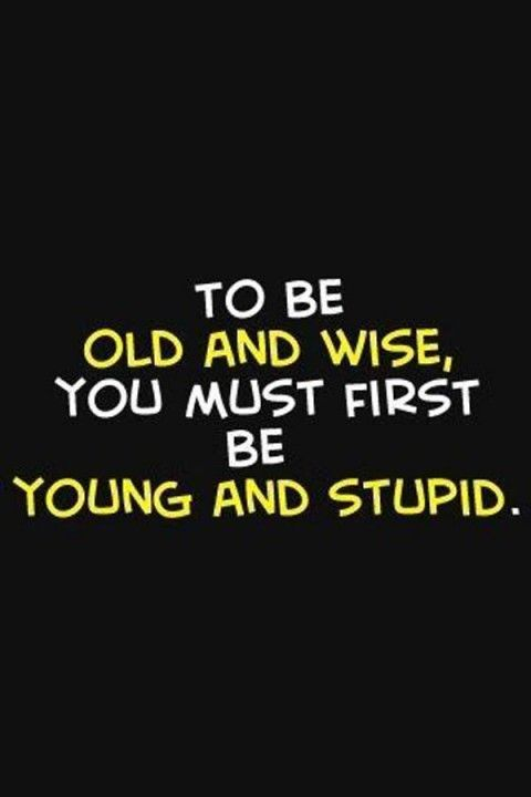 Funny Quotes About Life 173 47 Pict Funny Pictures Senior Quotes Inspirational Quotes Motivation Funny Quotes
