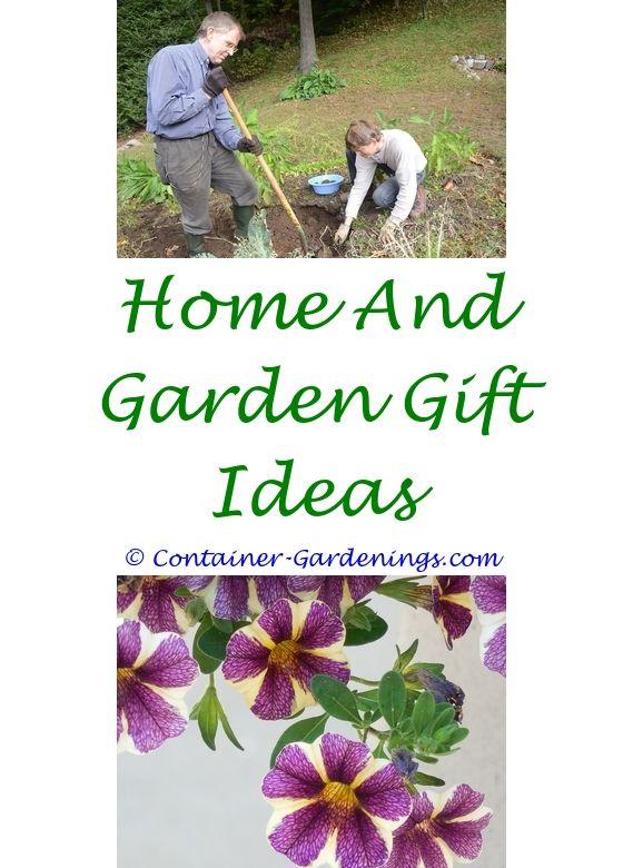 Planting A Garden | Vegetable garden, Container gardening and Garden ...