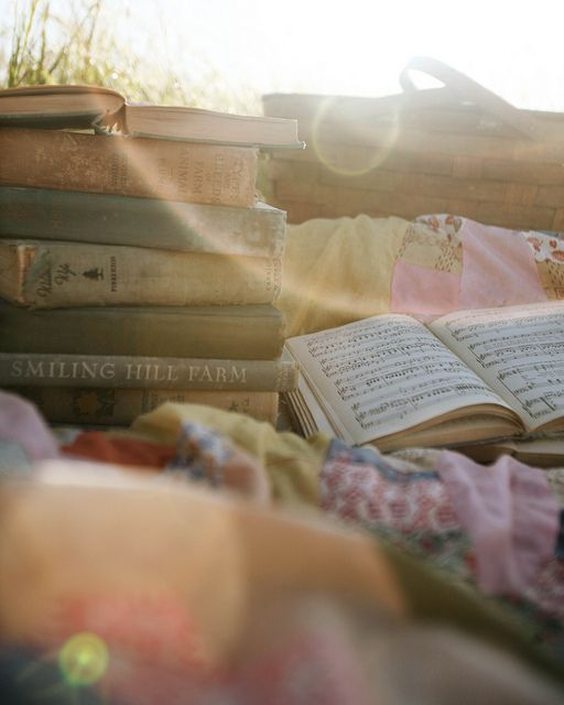 books and sunshine and a quilt and picnic basket...literally my definition of happiness