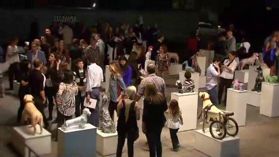 Cobertura en Televisión de la exposición dog.art.br