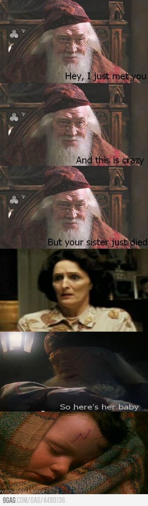 That's a knee slapper!: Dumbledore Call, Potter Joke, Harry Potter Style, Harrypotter, Potter Call, So Funny, Harry Potter Humor