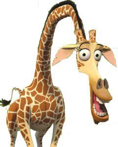 Pinterest the world s catalog of ideas - Girafe madagascar ...