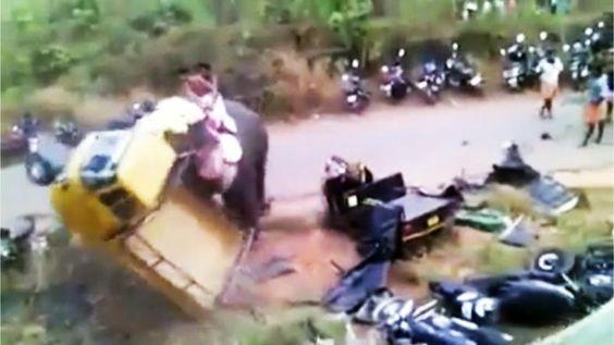 Elefant randaliert bei Fest in Indien