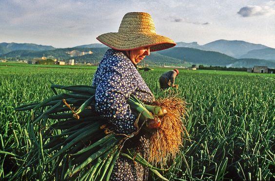 La Caja de Pandora: El trabajo invisible de las mujeres rurales