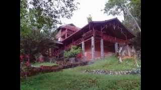 Own a Piece Of Heaven in Kota Tinggi Forest - Iskandar  http://lewaalliances.webs.com/ https://www.youtube.com/user/LeWaProperty #JohorIskandarSecondaryPropertyMarket #LeWaAlliances #Johor #Iskandar 如何在(馬來西亞)柔佛Johor / 伊斯干達 Iskandar 的中古屋/二手物業市場中找到合適的房產/樓市 如何在(馬來西亞)柔佛Johor / 伊斯干達 Iskandar 的二手物業市場中找到合適的房產/ 馬來西亞 柔佛 伊斯干達 #馬來西亞柔佛伊斯干達