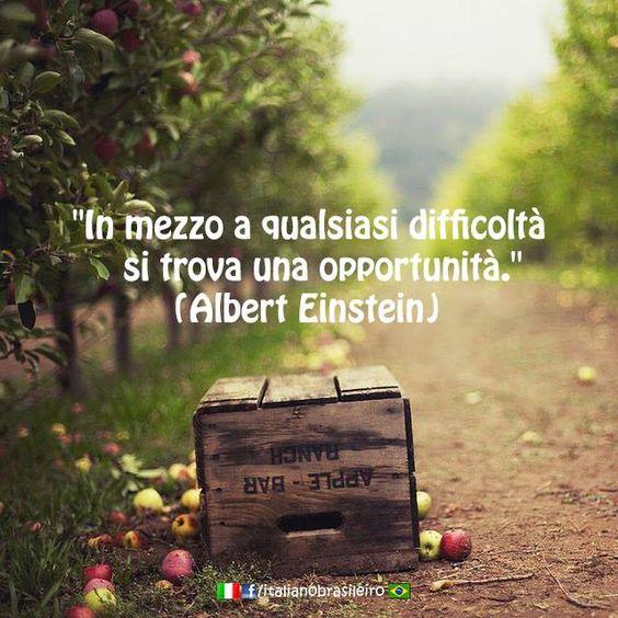 """""""In mezzo a qualsiasi difficoltà si trova una opportunità"""" (Albert Einstein)~ In…"""