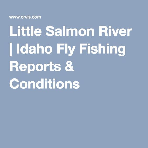 Little Salmon River | Idaho Fly Fishing Reports & Conditions