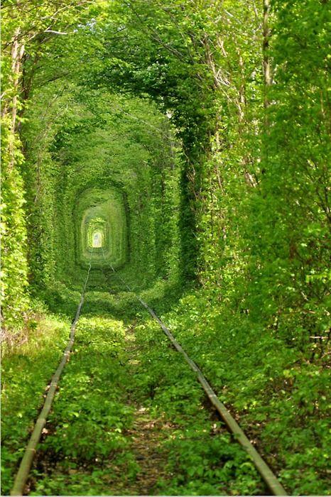 Trilho do Trem