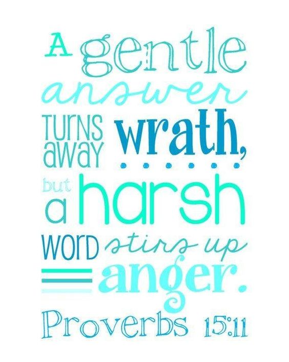 Anger Verses: Typo Error In Pic. Proverbs 15:1 NIV A Gentle Answer Turns