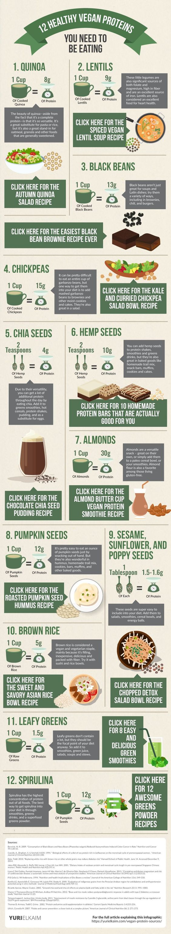 Even if you're not vegan, these 12 non-meat protein sources are the best of the best - and should be in your diet. Check them out... along with the recipes. | Yuri Elkaim
