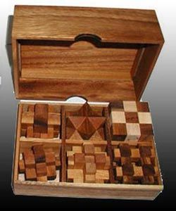 6 Puzzle Gift Set (Premium) Brain Teaser -- their wooden puzzle selection is amazing too. I want ALL the puzzles!