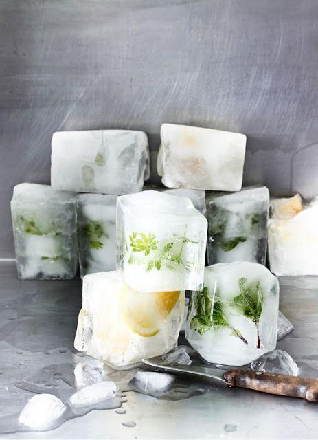 Heißer Sommer braucht kühlende Eiswürfel. Mit Kräutern und Früchten. Waldmeister. Zitrone. Minze.