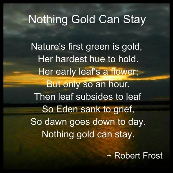 outsiders nothing gold can stay essay