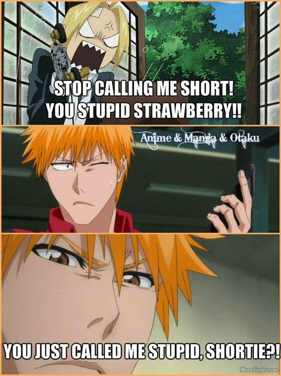 Edward Elric and Ichigo Kurosaki. hehe