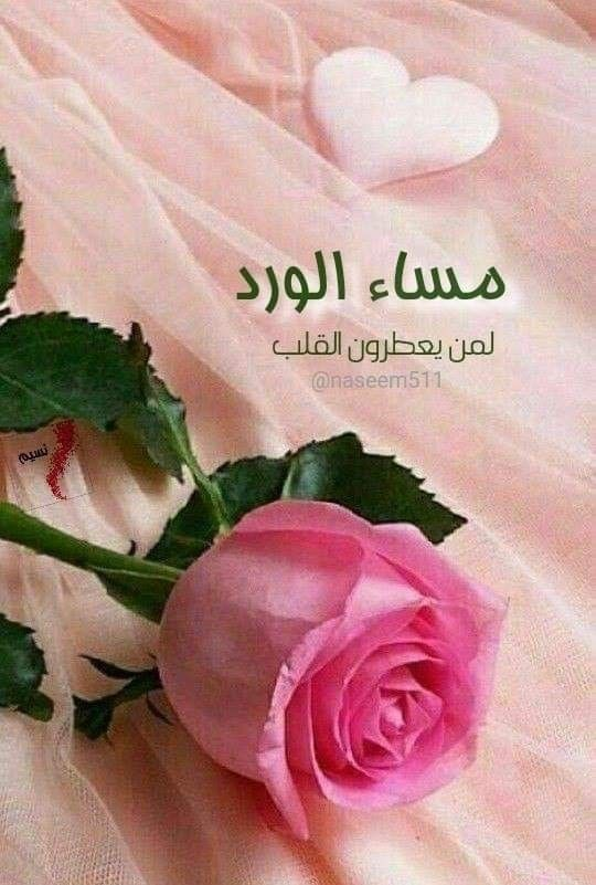 ﻭ ﻳ ﺄ ﺗ ﻲ ﺍﻟ ﻤ ﺴ ﺎﺀ ﻣ ﻦ ﺟ ﺪ ﻳﺪ ﻳ ﺤ ﻤ ﻞ معه ورودا معطرة ﻭ ﻣ ﻮ ﺍﻛ ﺐ ﻣ ﻦ ﺍﻟﺸ ﻮ ﻕ Good Evening Wishes Good Morning Arabic Night Wishes