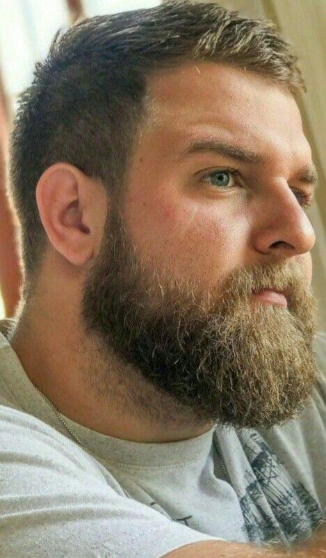 A Perfect Profile Of Beard Face And Nose Hair Beard Styles
