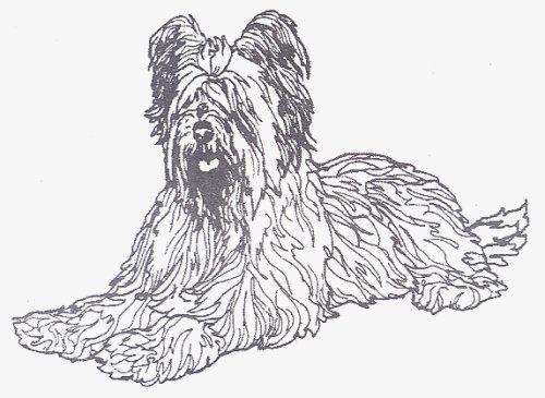 "Dog Rubber Stamp - Briard-1E (Size: 2-3/4"" Wide X 2"" Tall) by DogStampsPlus.com, http://www.amazon.com/dp/B000M0ZRCO/ref=cm_sw_r_pi_dp_lPULrb1S1GWS0"