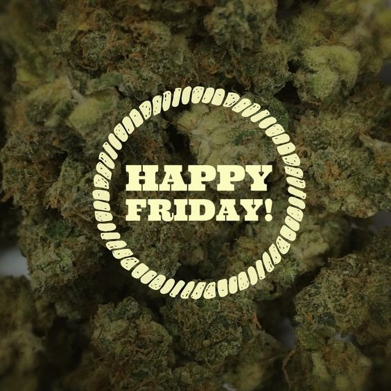 EARLY BIRD  730am till 11am  1Gift for $7 minimum donation   HAPPY HOUR  4pm till 8pm  $5 off all 1/4ths   710 SPECIAL  7pm till 10pm  $10 off 1G wax and cartridges (hash/kief not included)   NIGHT OWL  11pm till 1am  1Gift for $7 minimum donation