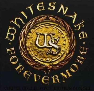 Whitesnake - Forevermore, Grey